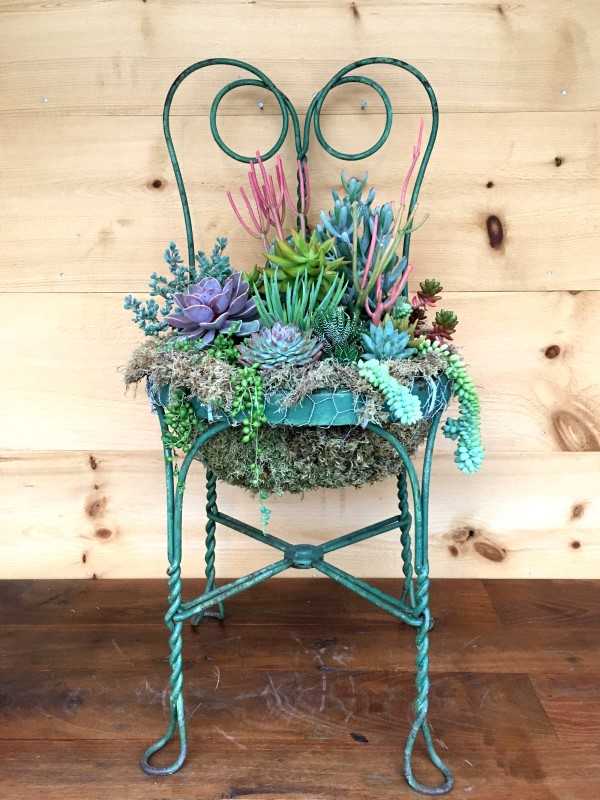 Garden chair used as planter