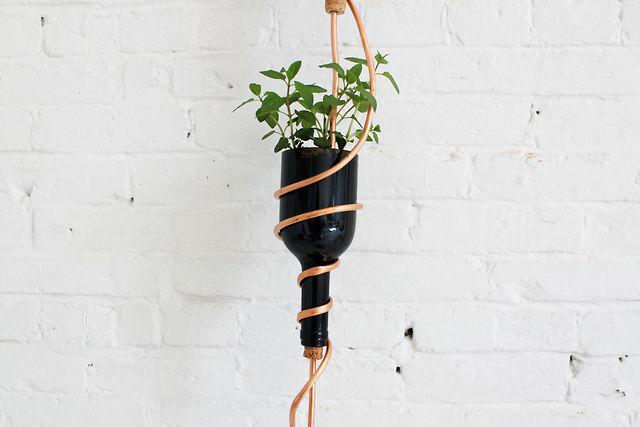 Hanging Vineyard