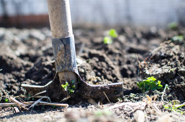 Shovel in the ground digging soil